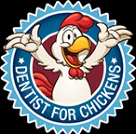 Dentist for Chickens: The Best Dentist Newcastl...