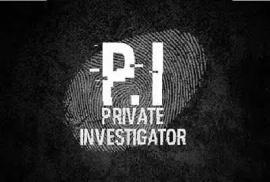 Computer Expert/Private Investigator